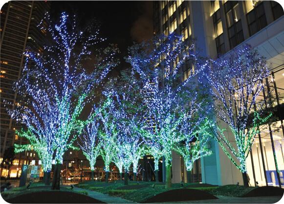 樹木イルミネーション ブルー、グリーン
